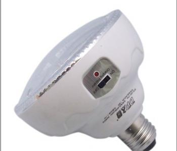 DP LED Emergency Light with Remote Control