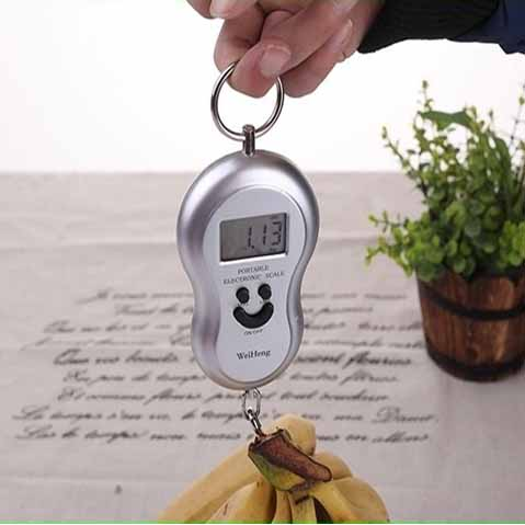 New Portable Electroni Hanging Scale YW-S001