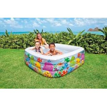 Intex Clearview Aquarium Pool 57471