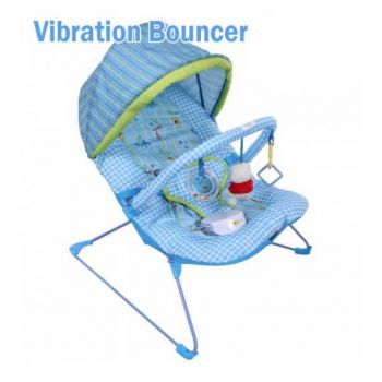 Carters Butterfly Fun Vibration Bouncer