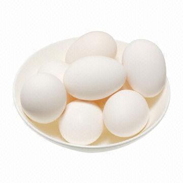 egg boiler  pakistan hitshoppk